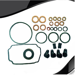 Diesel Pump Repair Kit