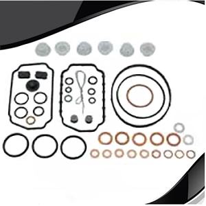 VE Injection Pump Rebuild Kit